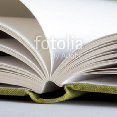 fotolia_38037976leinen